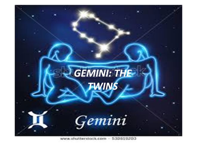 gemini for fb.png